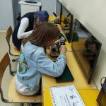 """Проектная деятельность по биологии (""""Ботаника в действии"""")"""